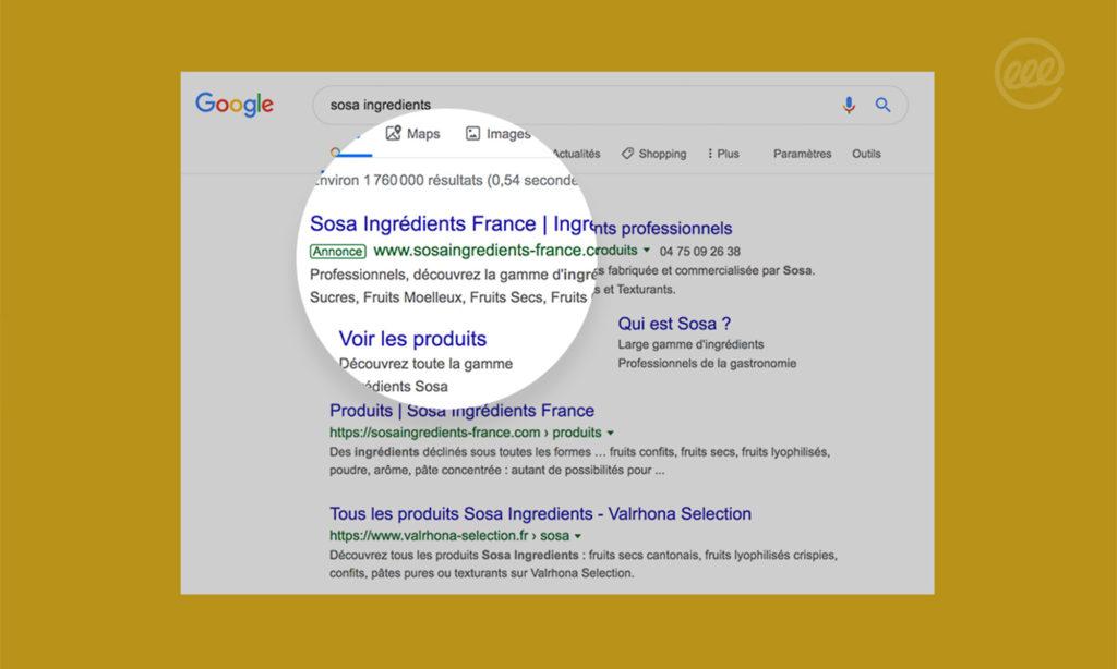 Aperçu du résultat Google